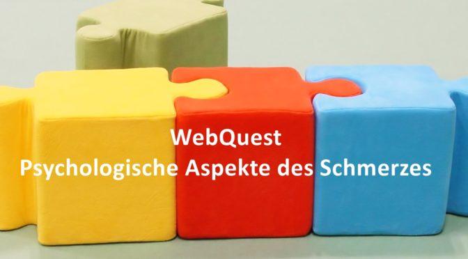 Webquest Psychologische Aspekte des Schmerzes